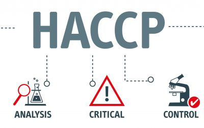 HACCP - Hazard Analysis and Critical Control Points acronym, vector illustration concept